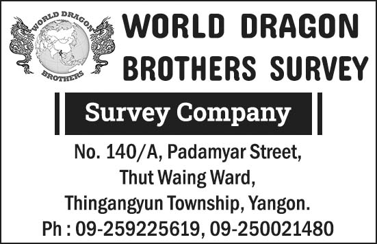 World Dragon Brother Survey
