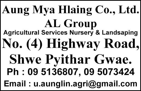 Aung Mya Hlaing Co., Ltd.