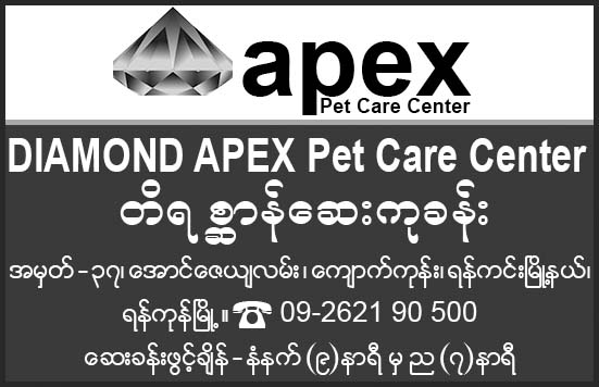 Diamond Apex Pet Care Center