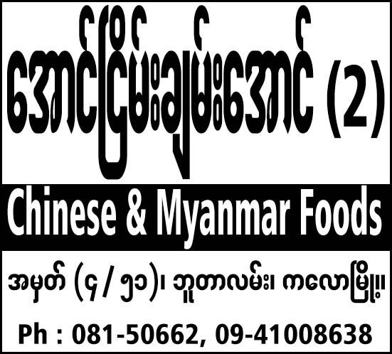 Aung Nyein Chan Aung 2