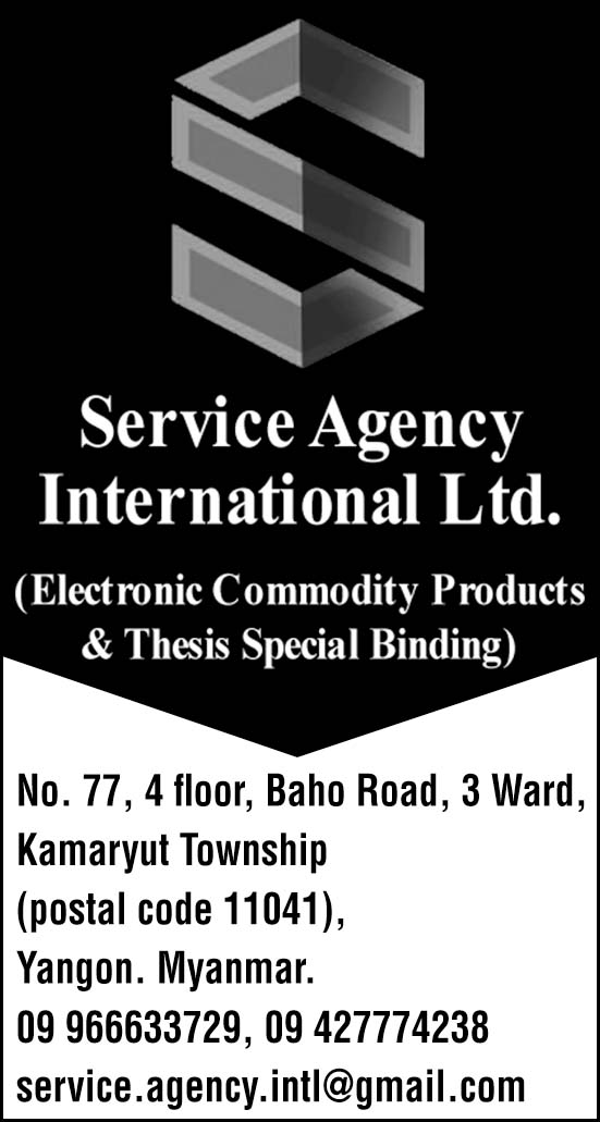 Service Agency International Ltd.