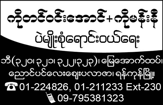 Ko Tin Win Aung + Ko Manni