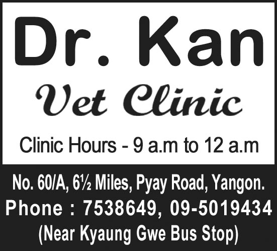 Dr. Kan
