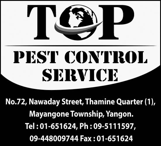 Top Pest Control Service