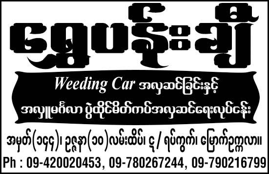 Shwe Pachi
