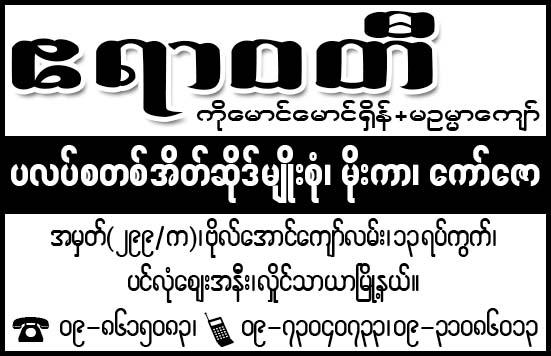 Ayeyarwaddy