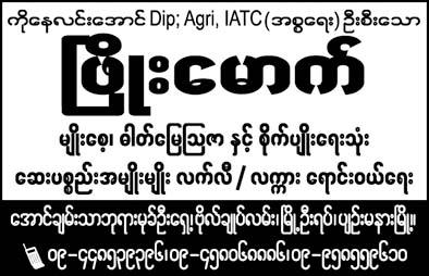Phyo Mauk