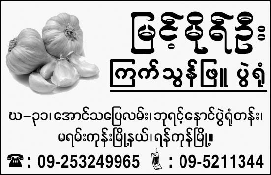 Myint Mo Oo