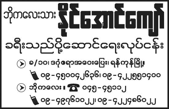 Naing Aung Kyaw (Ygn-Pathein)