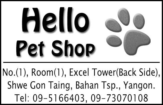 Hello Pet Shop