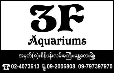 3F Aquarium