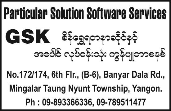 Particular Solution Software Services (GSK)