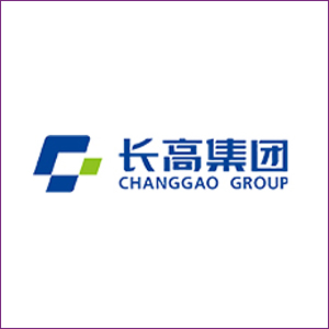 Hunan Changgao High Voltage Switchgear Group Co., Ltd.