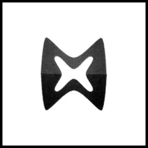 Maximus International