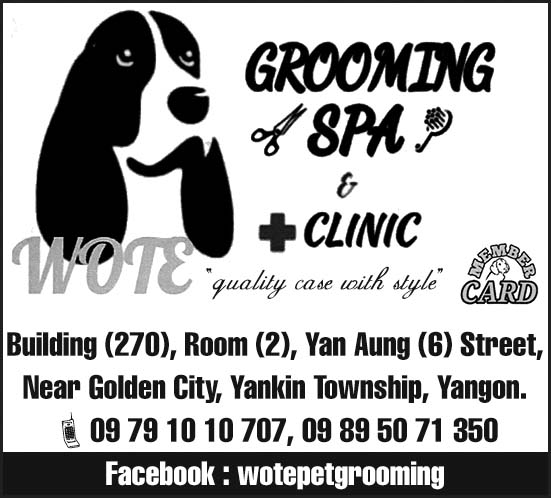 Wote Pet Grooming Spa, Hotel & Clinic