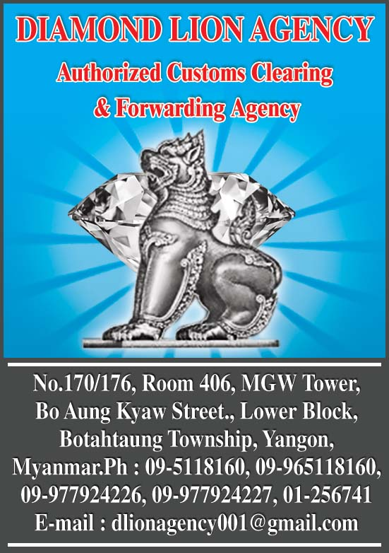 Diamond Lion Agency