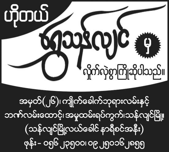 Hotel Shwe Thanlyin