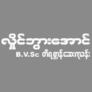 Hlaing Bwar Aung