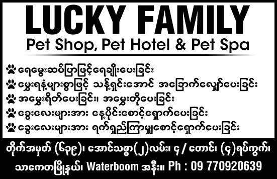 Lucky Family