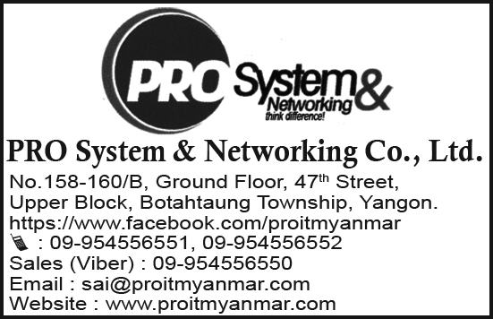 Pro System & Networking Co., Ltd.
