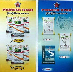 Myanmar Pioneer Star Co., Ltd.
