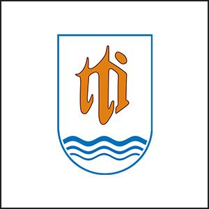 Trade Trans International Co., Ltd.