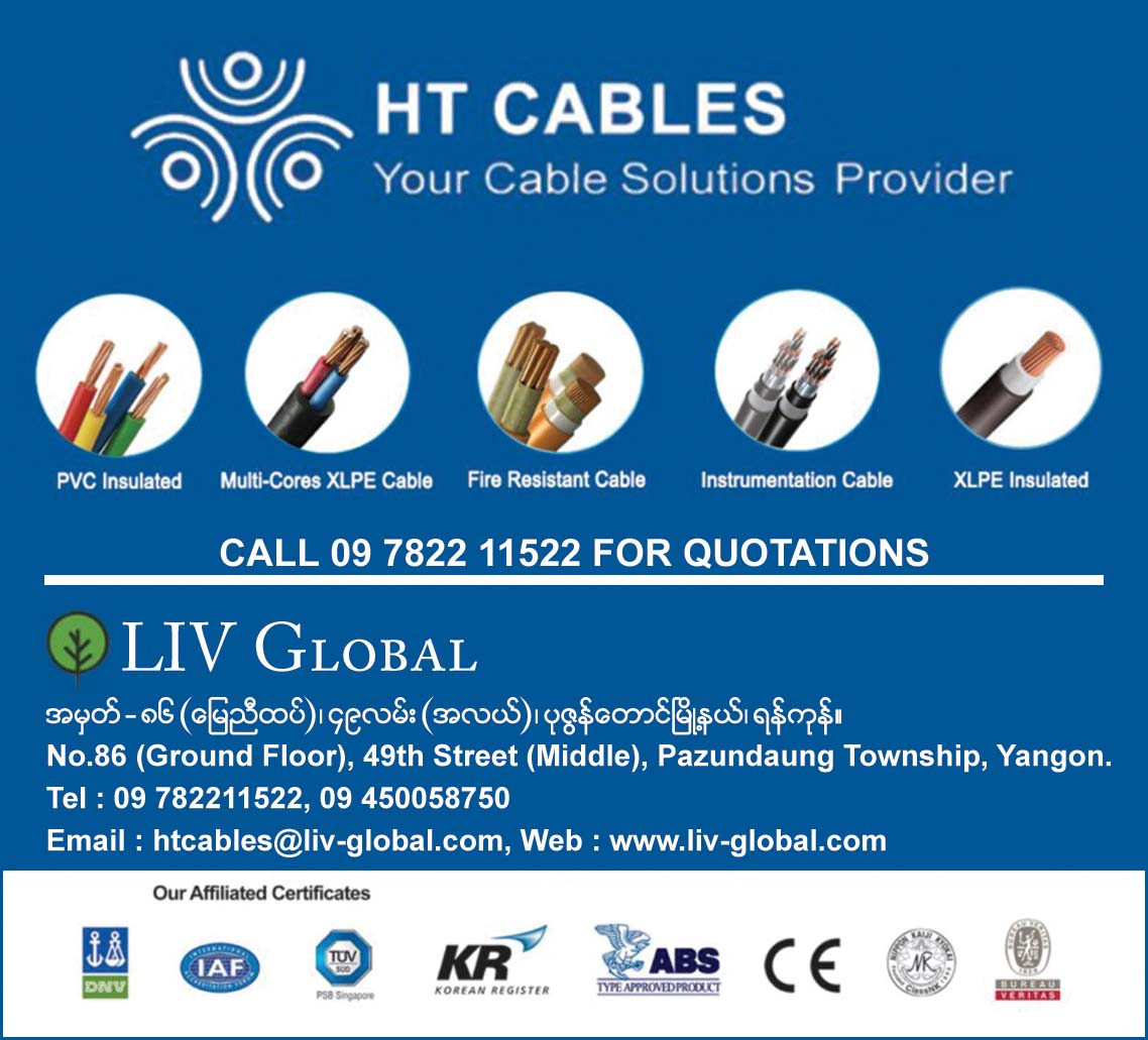 LIV Global (HT Cables)
