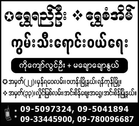 Shwe Yi Oo and Shwe San Eain