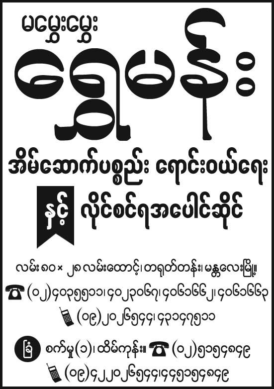 Shwe Mann