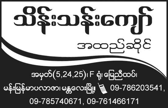 Thein Than Kyaw