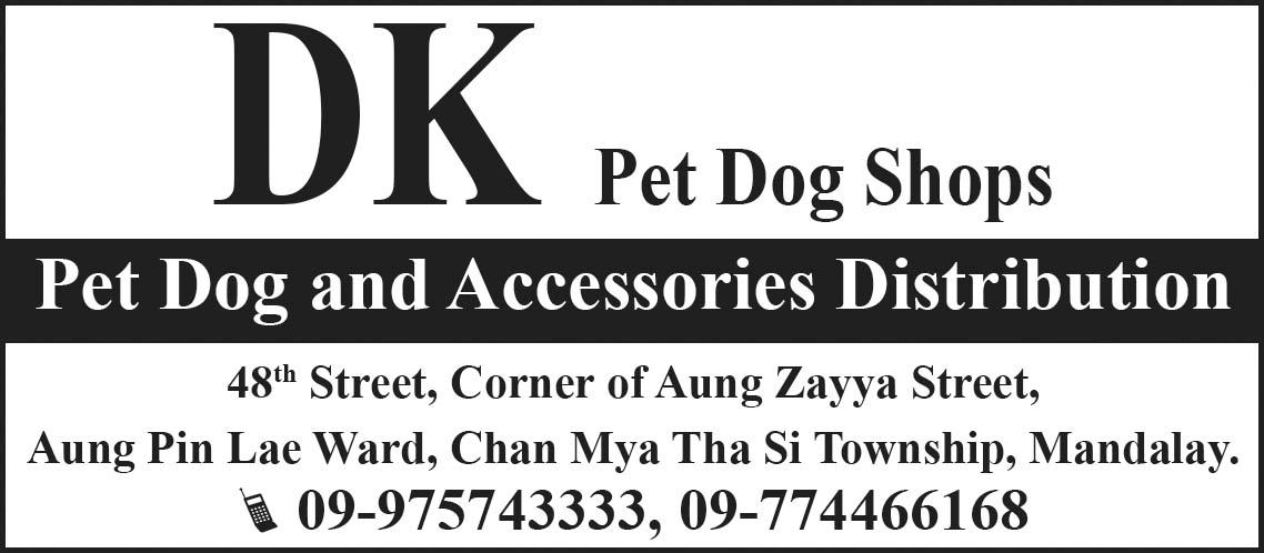 DK Pet Dog Shops