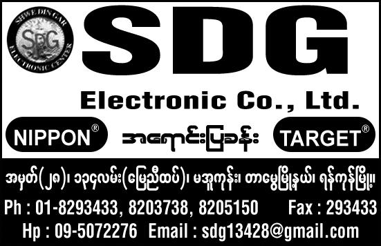 SDG Electronic Co., Ltd.