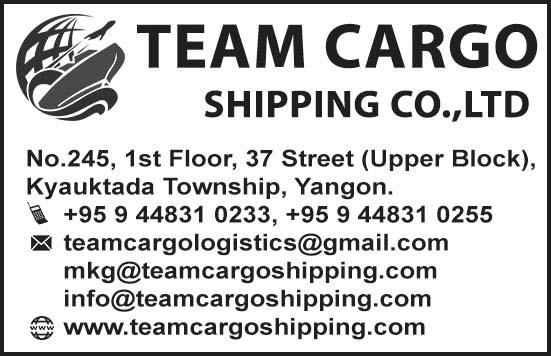 Team Cargo Shipping Co., Ltd.
