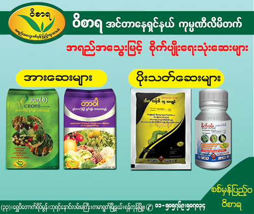 Produce Banner Yellow Pages